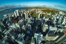 Auckland New Zealand Aerial View Panorama Cityscape