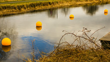 Bright Yellow Buoys With Reflections On The Surface Of A Canal.