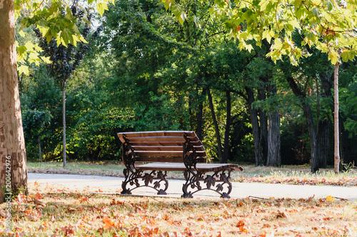 Zdjęcie XXL Ławka w parku w oczekiwaniu na kochanków