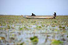 Floating Fishing Village - Uga...