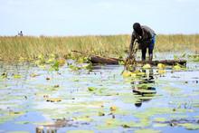 Floating Fishing Village - Uganda, Africa