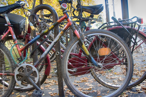 Deurstickers Amsterdam Composition of bike and yellow leaves