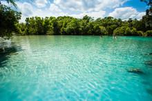 Silver Glen Springs, Florida