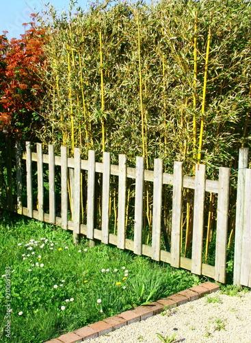 barrière en bois devant haie de bambous,clôture de jardin - Buy this ...