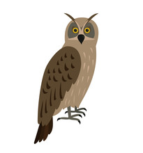 Eagle-owl Bird Icon On White B...