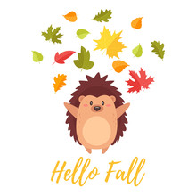 Hedgehog Tossing Autumn Colorf...