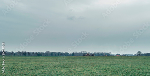 Foto op Aluminium Donkergrijs Dutch rural landscape with meadow and bare trees on overcast day.