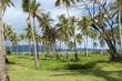 Voyage, nature, république dominicaine