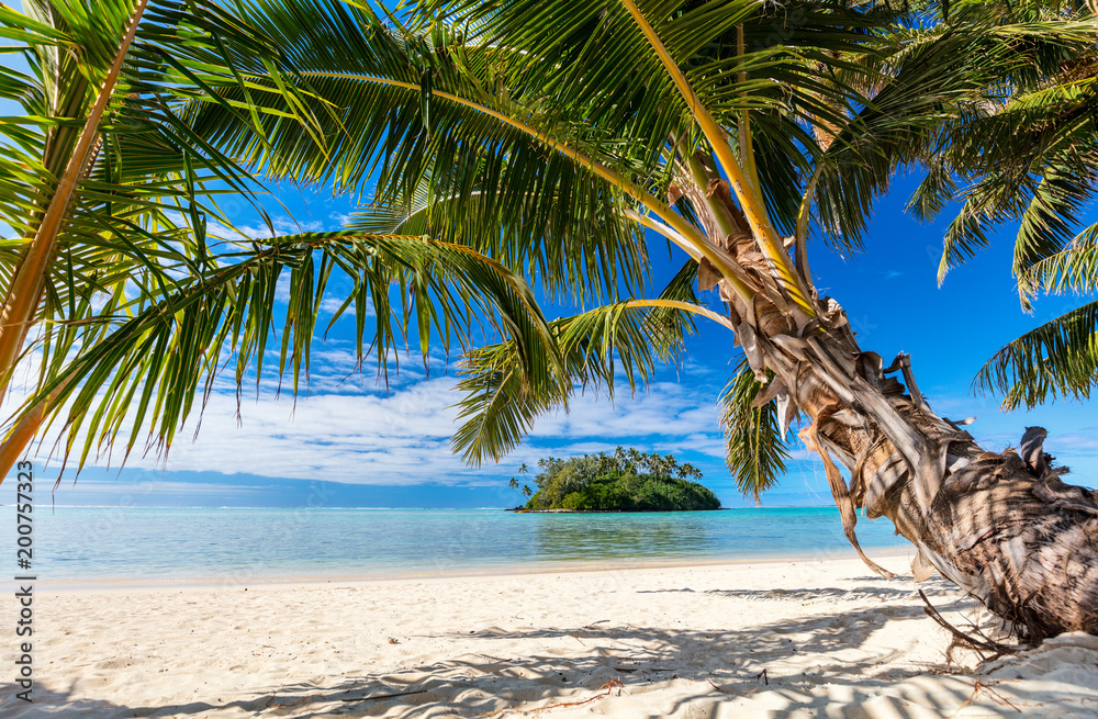 Fototapety, obrazy: Beautiful tropical beach at exotic island in Pacific