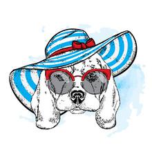 A Dog In A Summer Beach Hat. V...