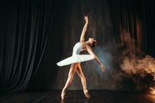 Ballerina In White Dress Danci...