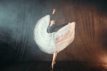 Fototapeta Taniec / Balet Ballet dancer in motion on the stage in theatre