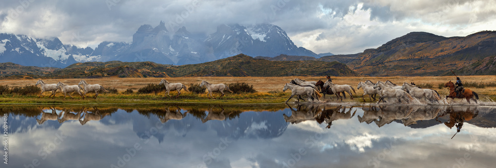 Fototapety, obrazy: Chilean Gauchos and herd of horses, scenic panorama. Torres del Paine National Park, Patagonia, Chile