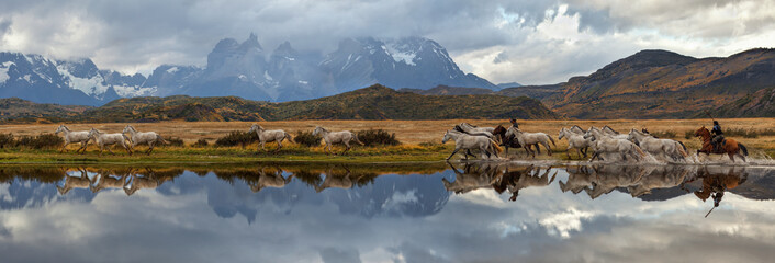 Fototapeta Chilean Gauchos and herd of horses, scenic panorama. Torres del Paine National Park, Patagonia, Chile