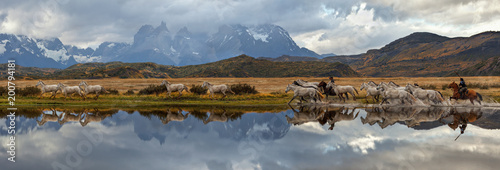 Chilean Gauchos and herd of horses, scenic panorama. Torres del Paine National Park, Patagonia, Chile