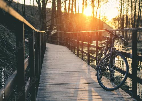 Spring bicycle © Giddrid