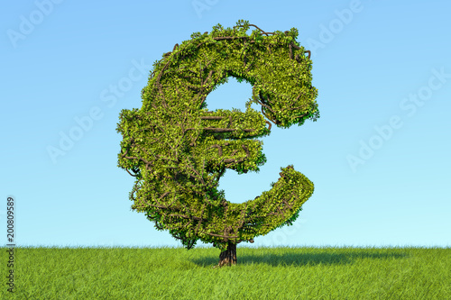 Tuinposter Fietsen Money tree in the shape of a euro sign on the green grass against blue sky, 3D rendering