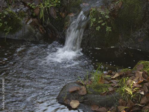 Foto op Canvas Watervallen Autumn leaves in a pond