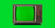 canvas print picture - Old Vintage Television with green screen