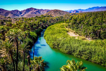 The Blue-green Mulege River Curves Through A Desert Oasis In Baja California Sur, Mexico