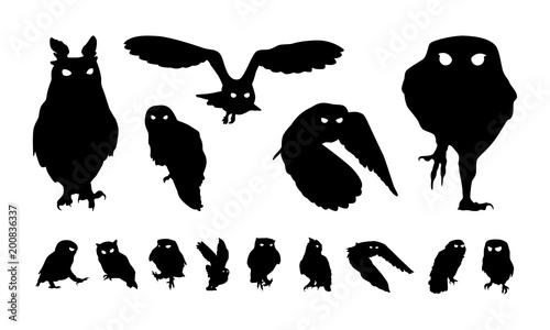Canvas Prints Owls cartoon Set of Various Owl Bird Silhouette, Fly and Perch Owl Bird Silhouette