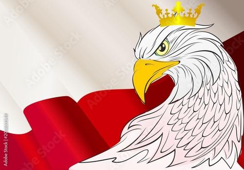 Polska - plakaty tlo-z-orlem