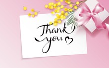 Thank You Card With Mimosa Branch And Gift Box On Pink Background.  Vetor Illustration
