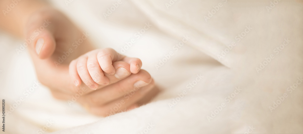 Fototapeta Female hand holding her newborn baby's hand. Mom with her child. Maternity, family, birth concept. Copy space for your text. Banner