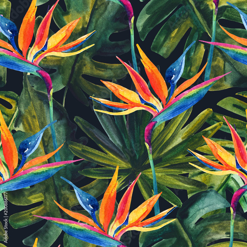 akwarela-tropikalny-wzor-z-kwiatem-raju-monstera-lisc-palmowy