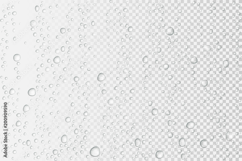 Fototapety, obrazy: Vector Water drops on glass. Rain drops on transparent background