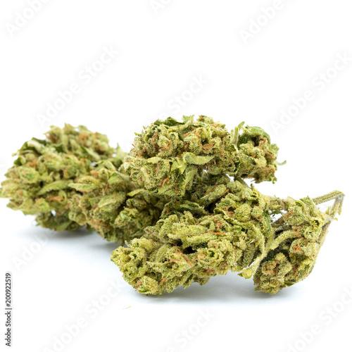 Fotografie, Obraz  Marijuana Isolated White Background