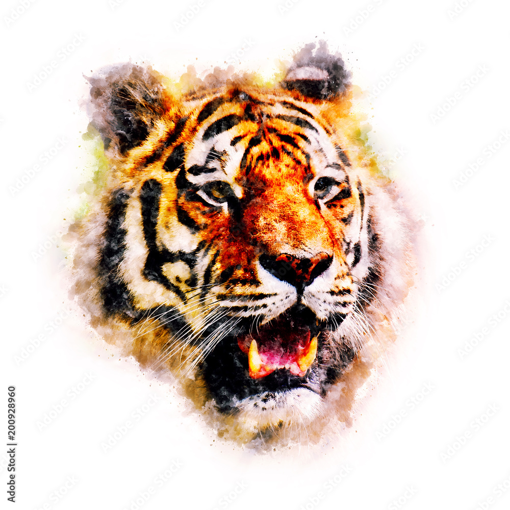 Tiger Watercolor painting Art