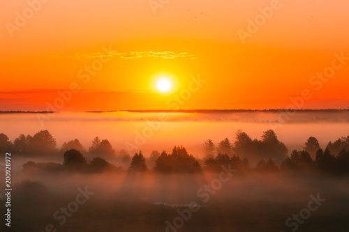 Foto op Plexiglas Diepbruine Amazing Sunrise Over Misty Landscape. Scenic View Of Foggy Morning Sky