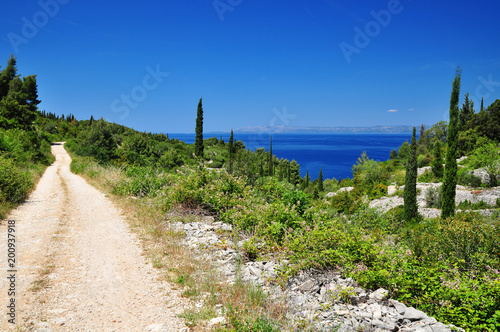 Fotografie, Obraz  Mediterranean  nature landscape view of sea in Korcula island