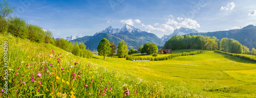 Foto op Plexiglas Weide, Moeras Idyllic landscape with blooming meadows and mountain peaks in the Alps in springtime