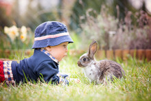 Sweet Toddler Boy In Garden, C...