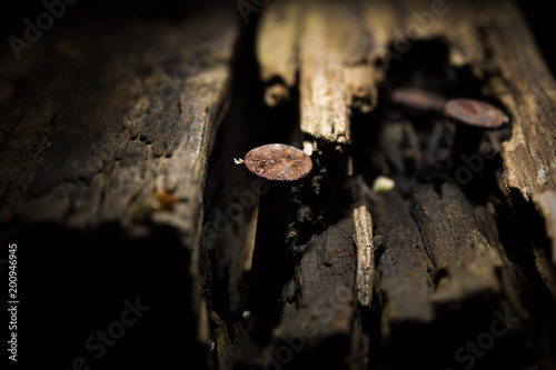 Rostiger alter Nagel und morsches Holz auf einem Dachboden ...