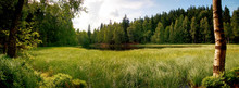 Grass Overgrown Pond With A Dramatic Cloudy Sky. Panorama View Of The Black Pond In National Nature Reserve Adrspach-Teplice Rocks, Czech Republic, Europe.