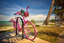 Summer Fun At Sarasota Florida...