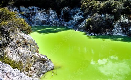 Papiers peints Vert chaux New Zealand