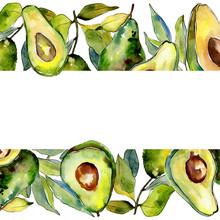 Exotic Green Avocado Wild Frui...