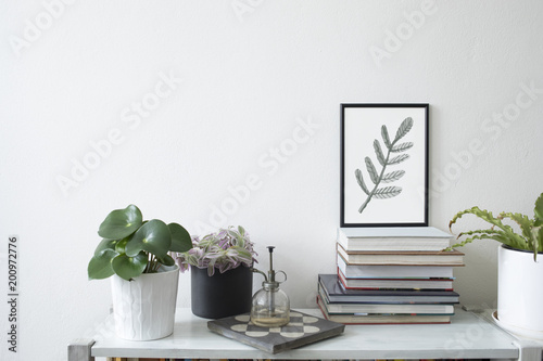 Trendy room interior with mock up poster frame ,plants and