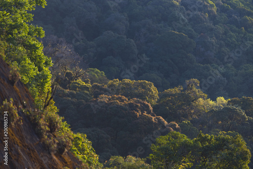 Staande foto Nachtblauw Mountains during sunset. Beautiful natural landscape in the summer time