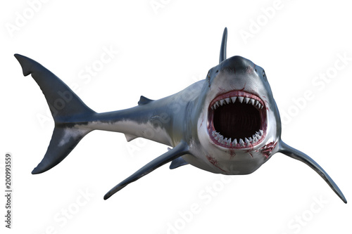 Great White shark isolated on white, 3d render Canvas Print
