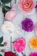 beautiful multi-colored roses