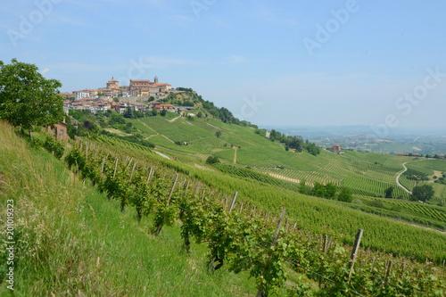 Wall Murals Vineyard イタリア、ワインの里ピエモンテの風景