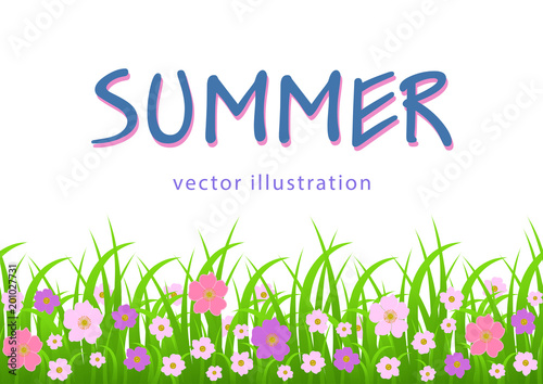 Photo Flowers and grass border, summer illustration, greeting card, cover, poster, banner with pink meadow flowers and green grass, decoration element, vector graphic drawing