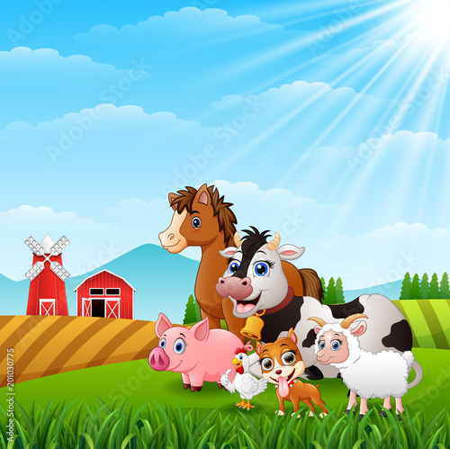 Poster Dogs Animals happy at the farm hills