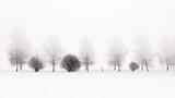 Spokojna scena brzóz w zimowej porannej mgle - 201030952