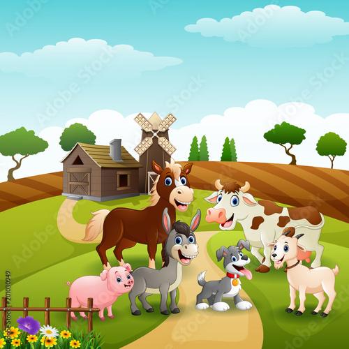 Fotobehang Boerderij Animals happy in farm background